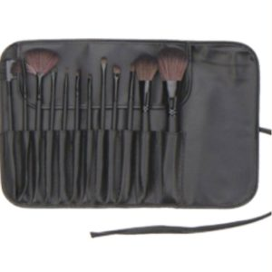 12 Piece brush set3